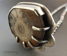 Ammonite Fossil | Flickr - Photo Sharing!  Laura Jane Bouton