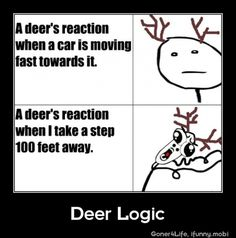 "Another age-old ""deer logic"" fail: Why aren't they called ""deers"" in plural?"