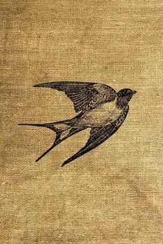 Majestic as fuck bird Free Bird Tattoo, Poetry Photos, Upcycled Vintage, Embroidery Art, Bird Art, Art Inspo, Small Tattoos, Printmaking, Art Photography
