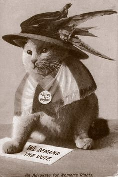"In the suffragette campaigns in England, women would go on hunger strikes in prison for the right to vote. The Prisoner's Temporary Discharge of Ill Health Act of 1913 let authorities release prisoners, then re-arrest them when they got better — it became known as the ""Cat-and-Mouse Act."" Advocates started to use cats as a symbol in posters like this."