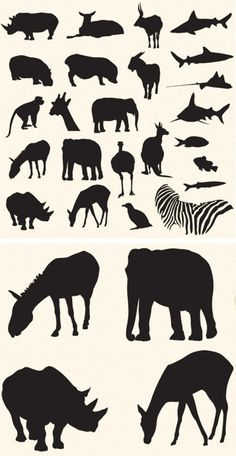 Free Vector Pack – Safari and Zoo Animals Kostenlose Vector Pack - Safari und Zootiere Safari Theme, Jungle Safari, Jungle Theme, Jungle Animals, Jungle Nursery, African Animals, African Safari, African Art, Safari Wedding