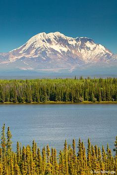 Mt. Drum in the Wrangell Mountains from Willow Lake,   Wrangell-St. Elias National Park and Preserve, Alaska