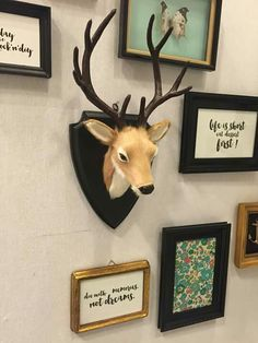 Biche Paris 2015, Moose Art, Frame, Diy, Animals, Home Decor, Doe Deere, Picture Frame, Animales