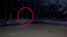 Real Ghost Caught on TAPETerrific Ghost Sighting real ghost videos