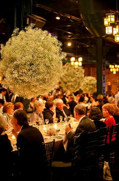 lush hanging floral centerpieces | ... globe, babys breath wedding flowers, hanging babys breath globes