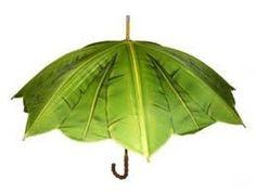 accessoire  //Leaf umbrella
