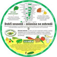 Companion Planting, Growing Plants, Indoor Plants, Pesto, Home And Garden, Gardening, Veronica, Atrium, Pergola