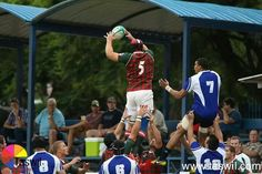 Lineout ball . Clean take ... against impala for the leopards .