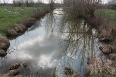 Clouds in the cloudy water / Nuvole nell'acqua