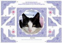 LIZZY A BLACK WHITE CAT S by S LACE FRAMED CORNER STACKER on Craftsuprint - Add To Basket!