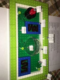 how to make a lego plant cell model