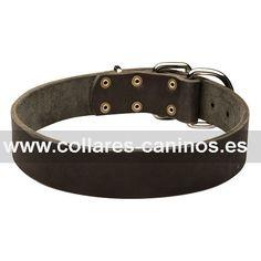 6e7e0ede81de Collar de aprendizaje para perros Dogo de Burdeos grandes y potentes diseño  en cuero ancho -
