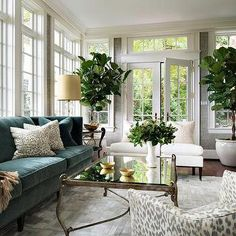 Transitional living room surrounded by framed windows and French doors leading outdoors, a teal sofa, printed throw pillows and an abundance of potted plants | BHDM Design