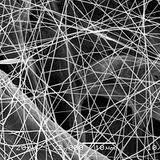 Nanofibre al microscopio elettronico