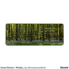 Shop Forest Blue Flowers-Beech Trees Ireland Wireless Keyboard created by JohnnieLawsonArtist. Forest Flowers, Blue Flowers, Beech Tree, Wonderful Images, Keyboard, Landscape Photography, Crowd, Prints, Products