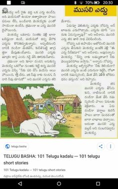 Moral Stories, Short Stories, Story Time, Telugu, My Photos, Beauty