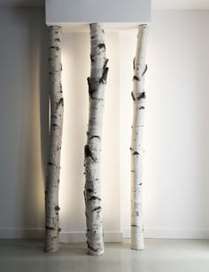 LED strips in birch logs for a light installation  Pause Studio - contemporary - toronto - by Pause Architecture + Interiors