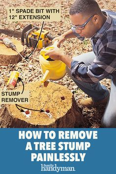How to Remove a Tree Stump Painlessly Garden Yard Ideas, Patio Ideas, Stump Grinder, Stump Removal, Project Steps, Tree Stumps, In The Hole, Tree Roots, Home