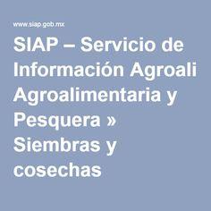 SIAP – Servicio de Información Agroalimentaria y Pesquera » Siembras y cosechas