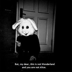 You aren't Alice