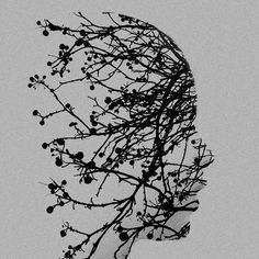roots | Tumblr