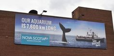 Image result for nova scotia billboards