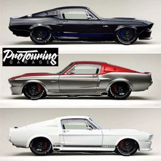 3 Shelby GT 500's I'll take the one in the middle