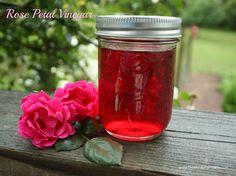 rose vinegar - Natural Cures for receding gums Natural Cures, Natural Healing, Au Natural, Natural Treatments, Natural Beauty, Coconut Oil Moisturizer, Vinegar Uses, Vinegar Hair, How To Make Rose