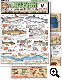 """Lot of 4 FRESHWATER /& #13 Tightlines Charts #1 #4 #3 How to Catch /""""em/"""""""