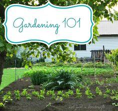 Great Gardening Tips! Gardening 101