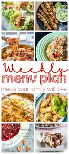 Weekly Meal Plan - 8 top bloggers are bringing you 6 main dishes and 2 desserts to make your week quick, easy, and delicious!