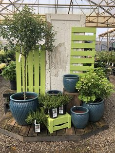 gartencenter 7 Steps to Craft a Merchandising Plan in 2019 - Garden & Backyard Retailer FIVE FISH SO Garden Nursery, Plant Nursery, Garden Shop, Lawn And Garden, Garden Spaces, Balcony Garden, Garden Plants, Fairy Gardening, Garden Center Displays