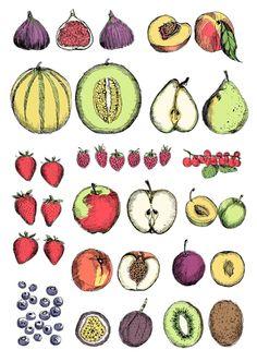 Fruit | May van Millingen, Drawings runs from 11 November – 19 January 2014 at The Modern Pantry, 47-48 St John's Square, Clerkenwell, London EC1V