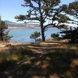 William Randolph Hearst State Beach: San Simeon Bay Trail - California   AllTrails.com
