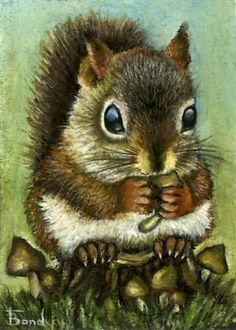 Baby squirrel and mushrooms - ACEO PRINT of an original painting by Tanya Bond. $5.00, via Etsy.