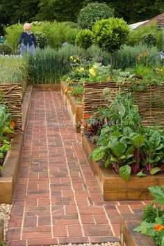 Vegetable garden with brick pathway and girl scarecrow. Love the look of garden . Vegetable garden with brick pathway and girl scarecrow. Love the look of garden and no mowing or weeding between plots! Potager Garden, Veg Garden, Edible Garden, Garden Paths, Garden Beds, Garden Cottage, Vegetable Gardening, Brick Garden, Vegetables Garden