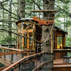 Check out this Hipcamp in California: Eagle's Nest Treehouse Farmstay, Salmon Creek Ranch - The Eagle& Nest Treehouse Farm Stay combines a wilderness experience, sumptuous old growth redwoods, but the comforts of a guest house, with. Camping Trailer For Sale, Camping Trailers, Jungle House, Jungle Tree, Eagle Nest, Cool Tree Houses, Tiny Houses, Tree House Designs, California Camping