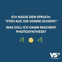 """Ich hasse den Spruch: """"Steh auf, die Sonne scheint."""" Was soll ich dann machen? Photosynthese?(Cool Quotes Random)"""