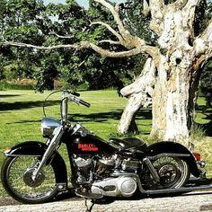 Nice Shovelhead Harley Davidson Scrambler, Harley Davidson Museum, Harley Bobber, Classic Harley Davidson, Harley Softail, Harley Bikes, Harley Davidson Chopper, Old School Motorcycles, Vintage Motorcycles