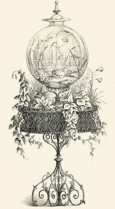 I think I could make this somehow.....Fishbowl, 1856. #Victorian #vintage #illustrations- Garden Fishbowl Graphic