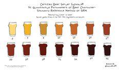 Certified Beer Server Syllabus- SRM or Color in Beer — Pints and Panels Samuel Adams Octoberfest, Beer 101, Pints, Hot Sauce Bottles, Craft Beer, Cheers, Ale, Color, Pint Glass