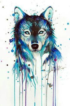 fondos, lobo, stuff, wallpapers, white and blue, wolf, First Set on Favim.com