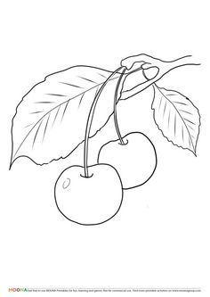 Fruits Coloring Sheets Luxury Luxury Apple Tree Coloring Page Apple Coloring Pages, Frog Coloring Pages, Tree Coloring Page, Doodle Coloring, Flower Coloring Pages, Free Printable Coloring Pages, Coloring Books, Coloring Sheets, Mandala Coloring