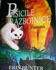 Recenzie: Pisicile Razboinice – Furtuna, de Erin Hunter