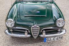 Alfa Romeo Giulia 1600 Spider, Frontansicht, Kühlergrill