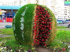 Photo No name. Album Топиарий в парках России.Красота - 145 photos. @ ЗВЕЗДА ЛЮБВИ @'s photos.