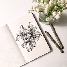 Flower Illustraton