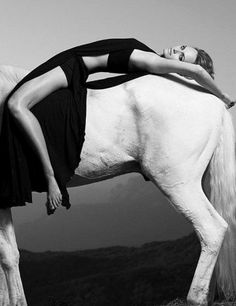 i need to do a photo shoot with a horse.