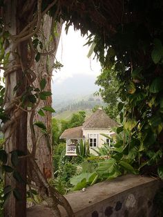 Strawberry Hill in Jamaica's Blue Mountains