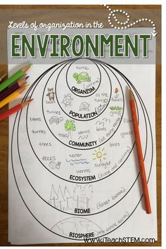 STEM: Ecological Organization Formative Assessments Three simple ways for science teachers to assess the level of understanding their students have of the levels of organization in the environment. Examples of living and nonliving parts of the environment Biology Classroom, Teaching Biology, Science Biology, Science Education, Life Science, Biology Revision, Biology Teacher, Forensic Science, Science Fair